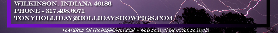 Holliday Show Pigs